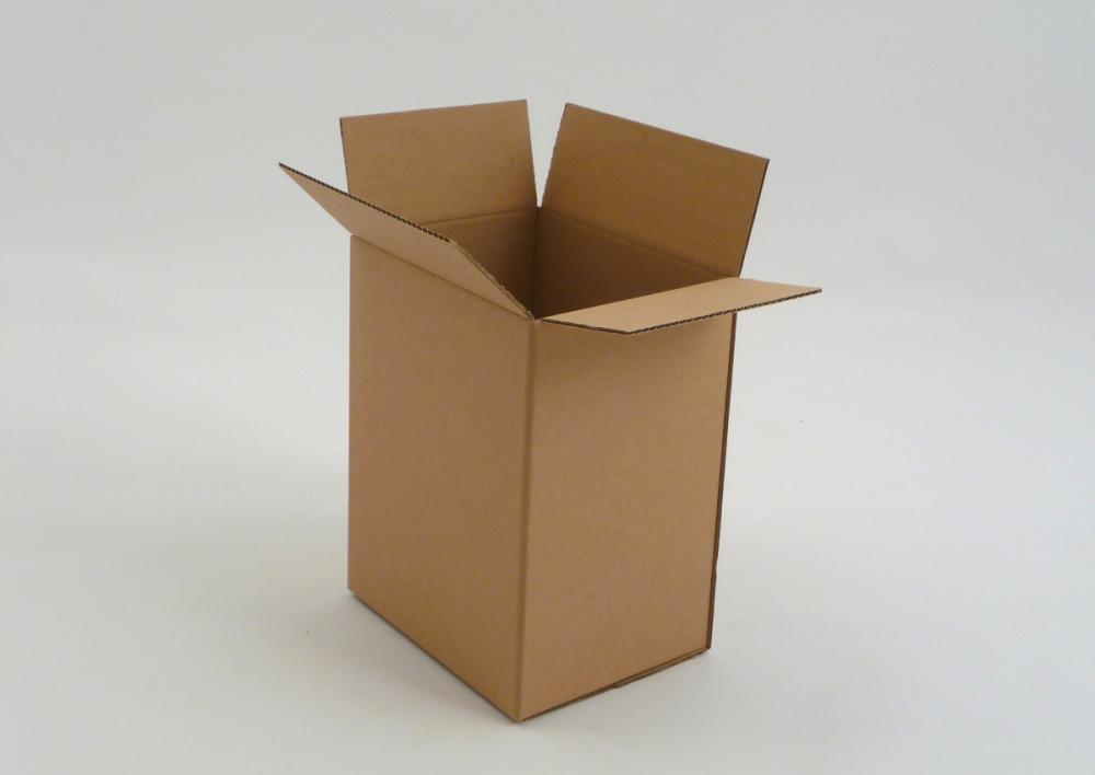 Kartonska škatla P2.1 230x160x320mm