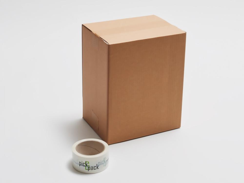 Kartonska škatla P3.1 250x190x310mm