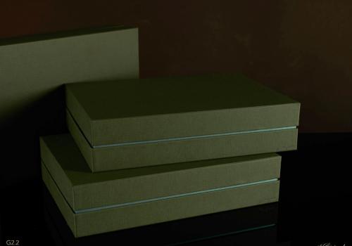 Darilna škatla G2.2 RS350X250X80mm ZELENA