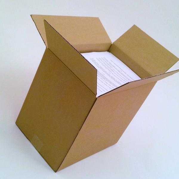Kartonska škatla P6.1 320X220X300 mm