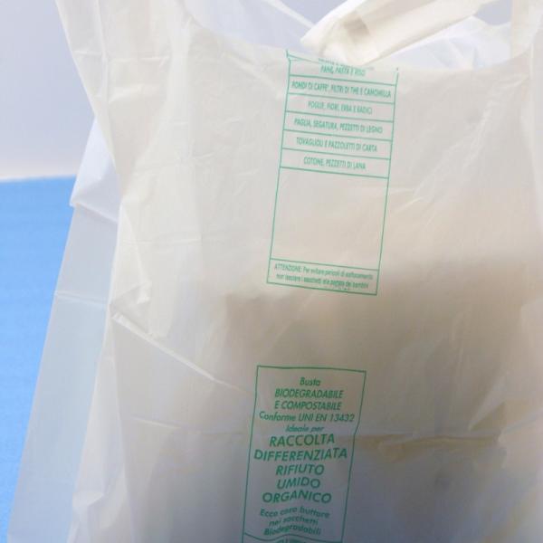 Vrečke nakupovalne BIO 350X400