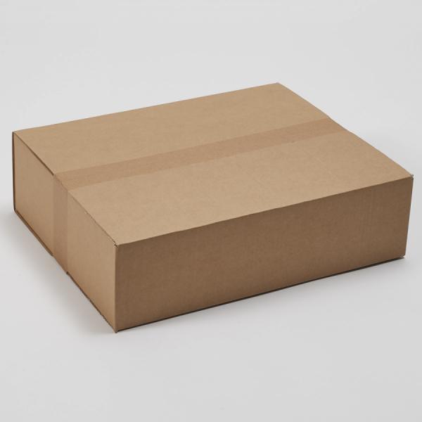 Kartonska škatla P9.1 450X350X120mm